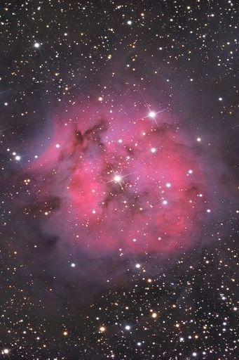 Dans la galaxie rose