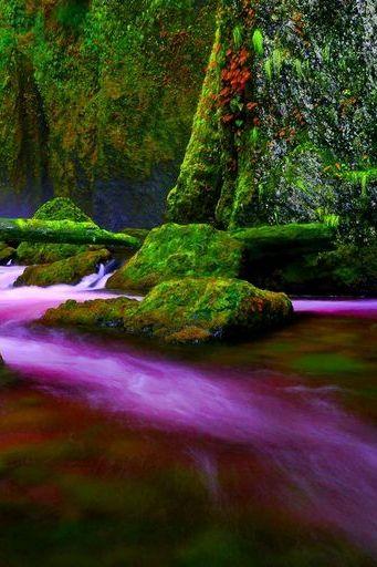 Purpleriver