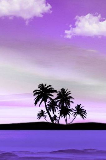 Purple Palms Clouds