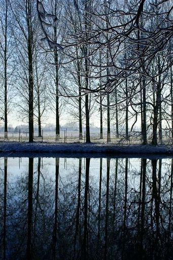 Rijn River