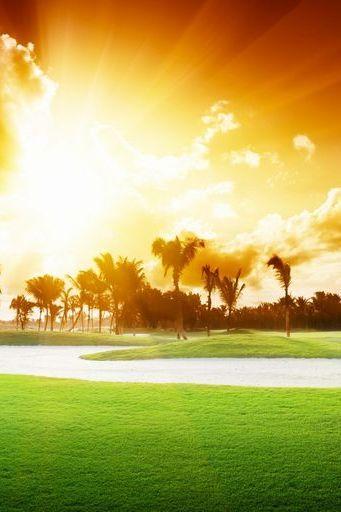 Sun Shining Day