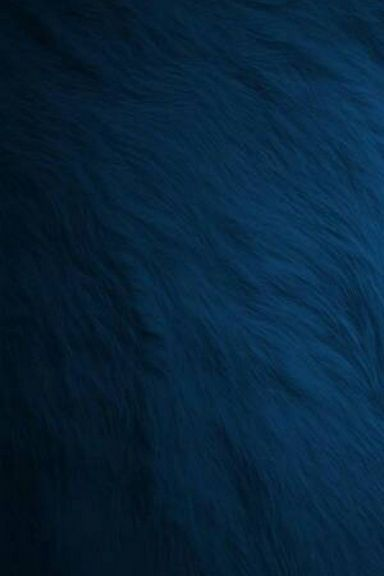 Blue-fur-wallpaper