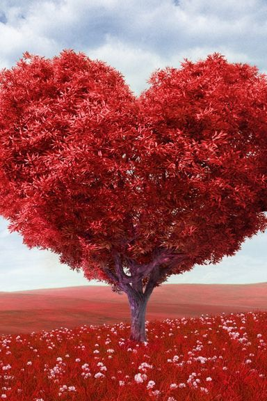 Love Red Tree