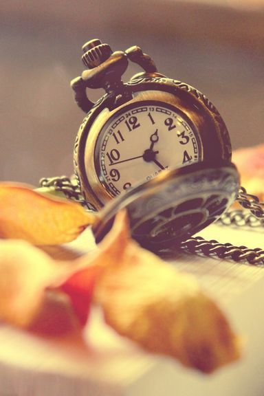 Vintage Watch And Petals