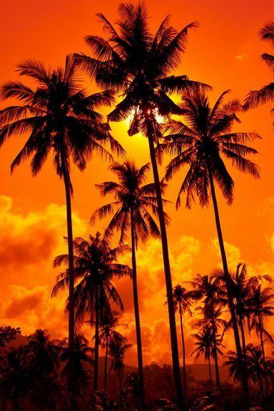 Sunset-Thailand-768x1280