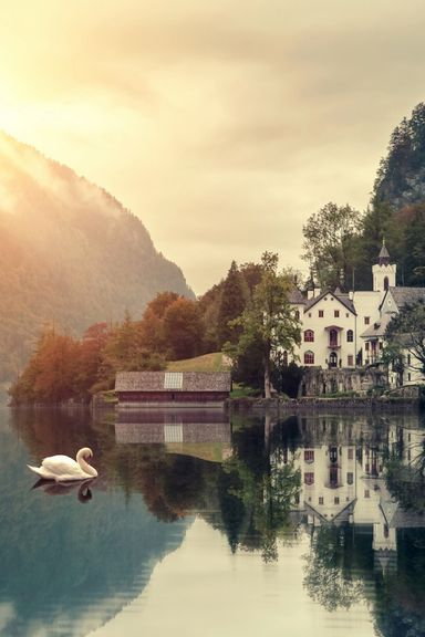 Beautiful House At Swan Lake