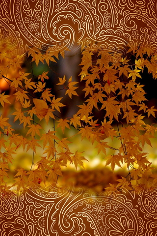 Autumn Leaves 640х960