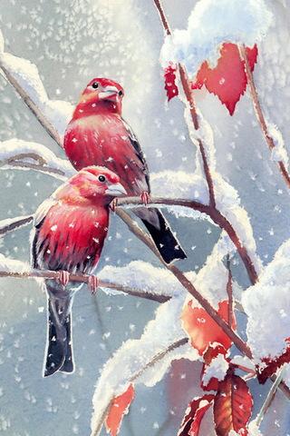 겨울 새들