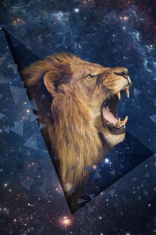 Space Leo