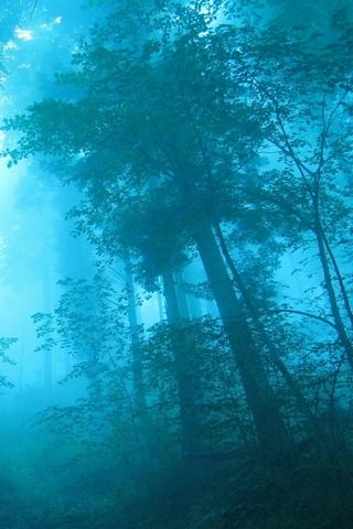 Blauer Nebel