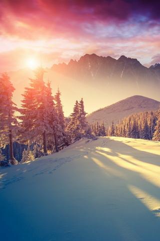 Зима сонце