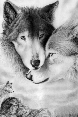 Wolf Couple