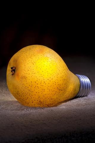 Bulb Pear