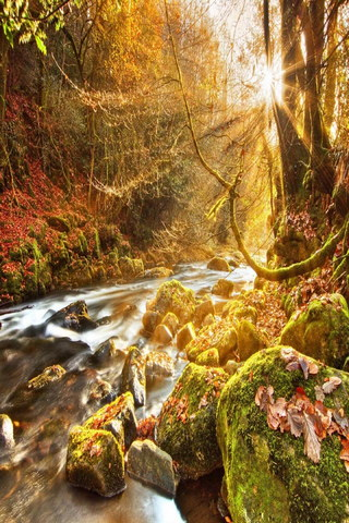 Autumn River Rays Of Light
