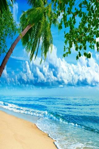 Tropics Coast Sea