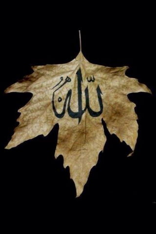 Leaf Written Name Of Allah