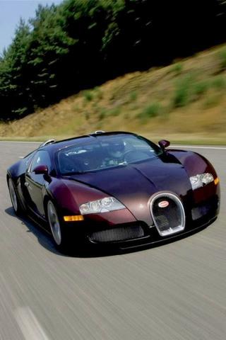 Bugatti veron (2)