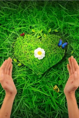 자연 사랑
