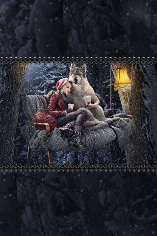 Little Red Riding Hood And Grey Wolf 640x960