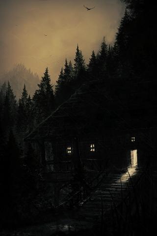 Damp Cabin