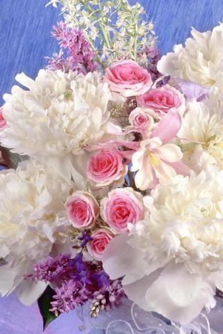 Flowers&roses