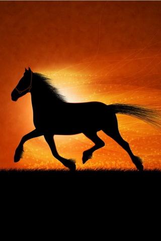 Hoàng hôn ngựa