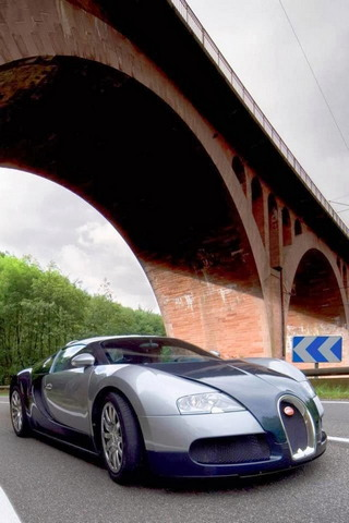 Bugatti veron (1)