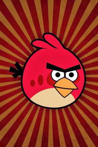 Aves Irritadas (3)