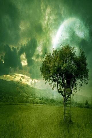 幻想的な自然