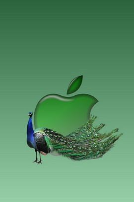 Apple e pavone