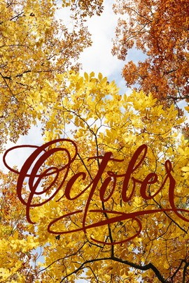 ตุลาคม