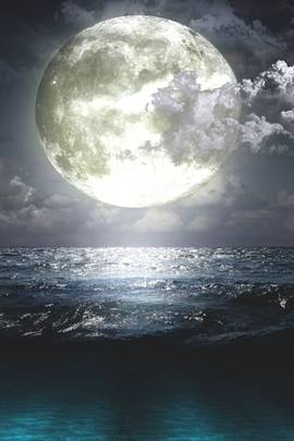 Full Moon Landscape