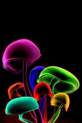 Cogumelos 3D coloridos