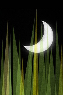 Moon And Grass