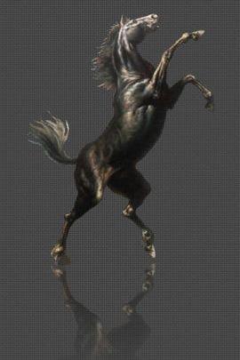 Carbon Horse 3