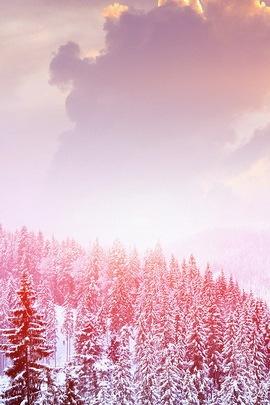 Núi Tuyết trắng