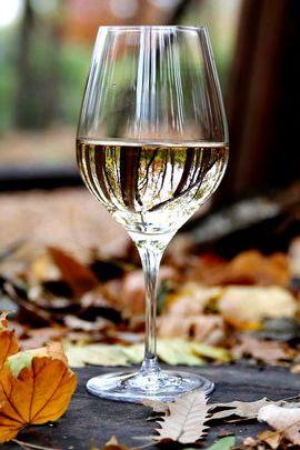 가을 와인