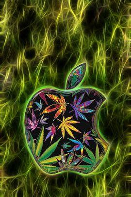 الأعشاب البرية