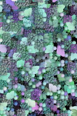 Elysium Pastel