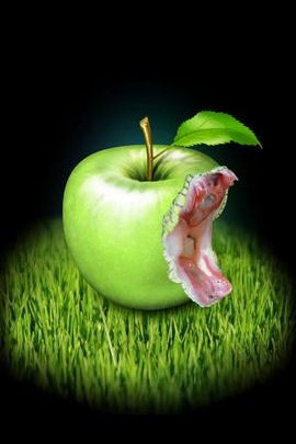 Apple viper In Grass