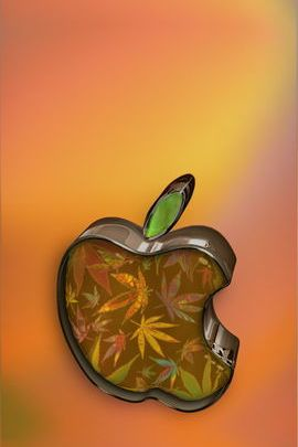 Glass Weed Apple