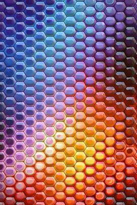 Honeycomb Delight