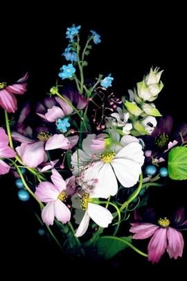 Flower Bouquet In Dark