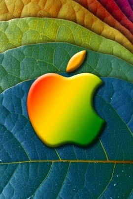 Apple On A Leaf