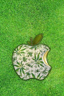 I Love Grass!