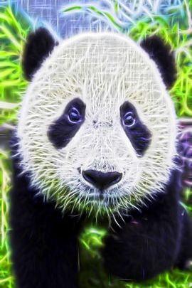 Фрактальная панда