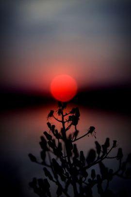 Impresionante puesta de sol