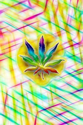 Crazy Weed