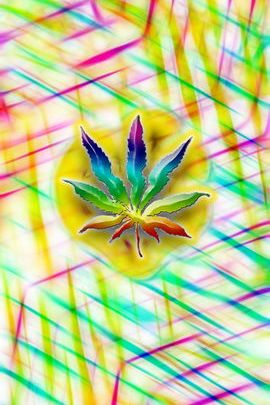 Божевільний Weed