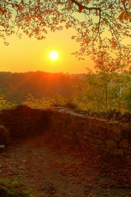 Nature Autumn Sunrise